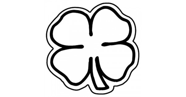 Custom oval shaped car magnet 13